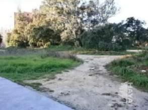 Terreno en calle Olivo, nº Sn