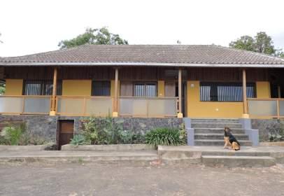 Rural Property in Camino Piedra Pomez