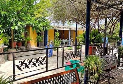 Finca rústica en calle Pinares de Pinseque