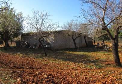 Rural Property in Sa Cabaneta