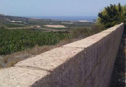 Rural Property in Guia de Isora
