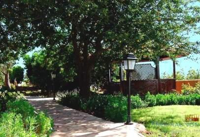 Rural Property in El Rosario