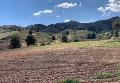 Casa a La Hoya-Almendricos-Purias