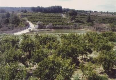 Rural Property in L'Alcora
