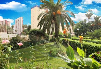 Apartament a Carrer de la Devesa
