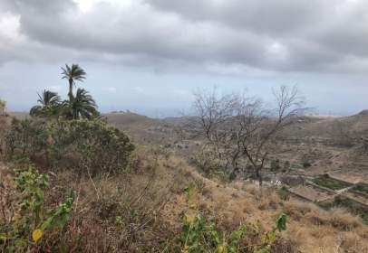 Terreno en Camino Vecinal el Fondillo, nº 23