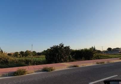 Land in calle Paco Esteban