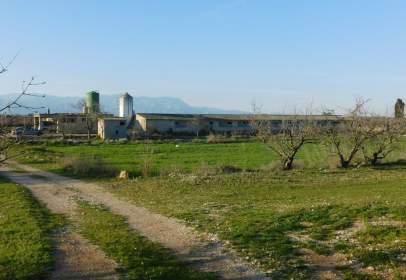 Rural Property in calle Poligono 37, Parcela 11, 17, 19, 20, 21, 25, 26 Y