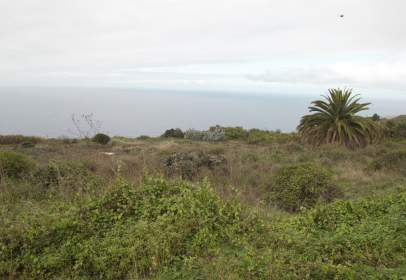 Land in El Sauzal