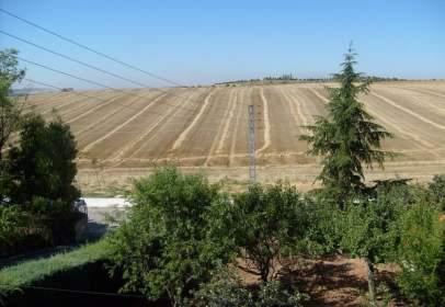 Chalet en Las Castillas