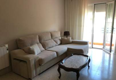 Flat in Don Benito
