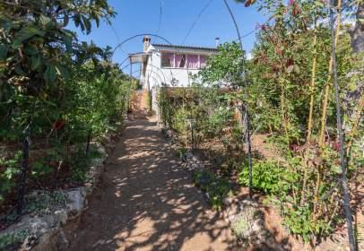 Casa en calle Pinos Silvestres