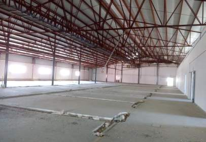 Industrial Warehouse in Hellin