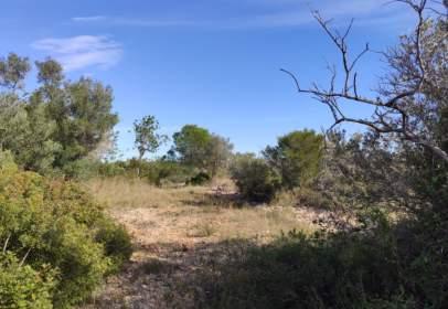 Rural Property in Polígono 2,  Parcela 118 y 86, nº 2