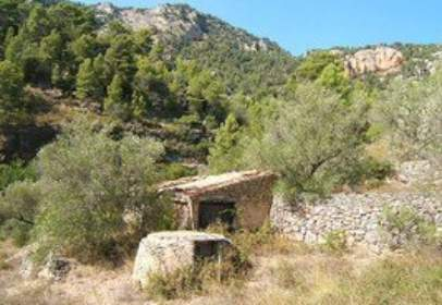 Rural Property in calle Deveres
