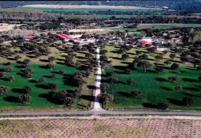 Rural Property in Maqueda