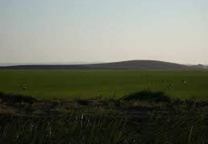 Rural Property in Rural