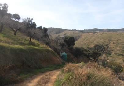 Finca rústica en Montes de Malaga