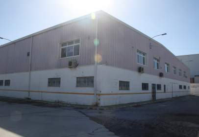Industrial Warehouse in Polig. Ind. Cortijo Real