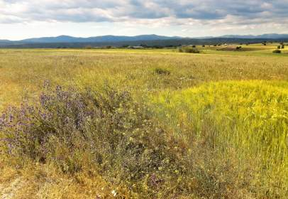 Rural Property in Brunete