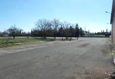 Terreny a Camino Anejo La Poblachuela