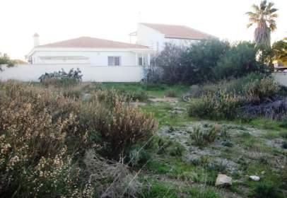 Land in calle Paraíso, nº 5