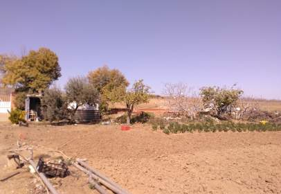 Rural Property in Albarreal de Tajo