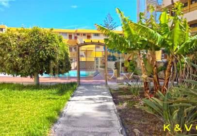 Apartamento en calle Playa del Inglés 2 Dorm 60M2 Sin Explotación