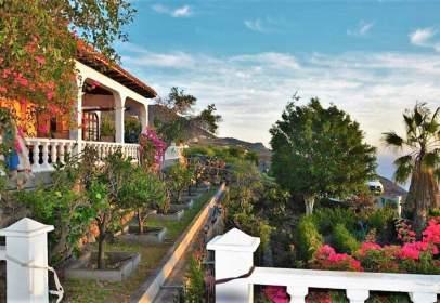 Rural Property in Camino Nicho la Cruz