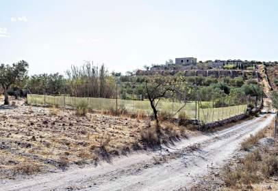 Terreno en calle Barranco Garrido,