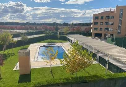 Apartament a Arcas Reales - Pinar del Jalón