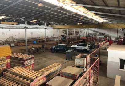 Industrial Warehouse in calle El Roso