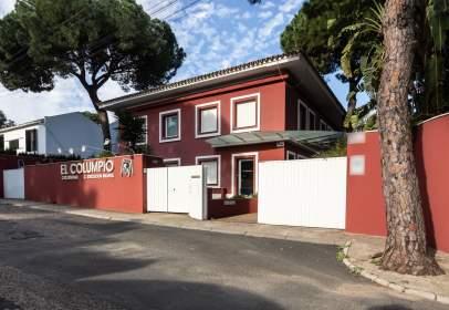 Casa a calle del Pinsapo, prop de Calle del Alcalde Juan Clemente Trujillo Pérez