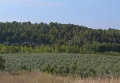 Land in calle Torre del Compte