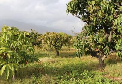 Rural Property in Camino del Socorro