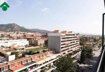 Pisos y apartamentos en vilassar de mar barcelona - Alquiler de pisos en vilassar de mar ...