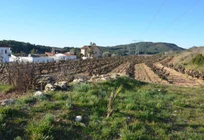 Finca rústica en Avinyonet del Penedès