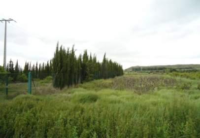 Land in calle Ctra Nacional 3040, nº S/N