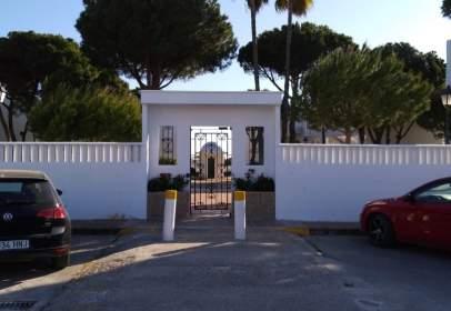 Estudio en Sancti Petri-Playa de La Barrosa