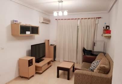 Apartment in Marina Dor
