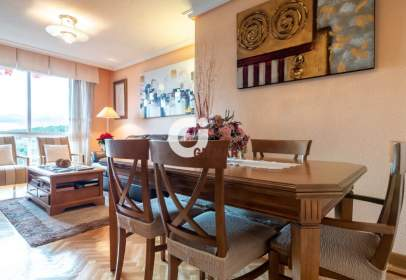 Flat in Tres Cantos