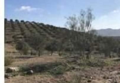 Rural Property in calle Cañada de Estepilla y Las Victorias
