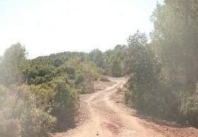 Rural Property in calle Partida Muela y Losas,Poligono 6, nº S/N