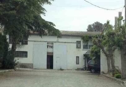 Nave industrial en calle Lugar Cortijo San Agustin, nº S/N
