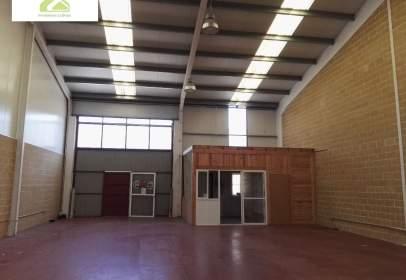 Nave industrial en La Hiniesta-Peña Trevinca-Siglo XXI
