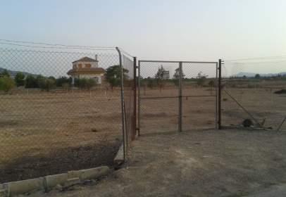 Rural Property in Librilla