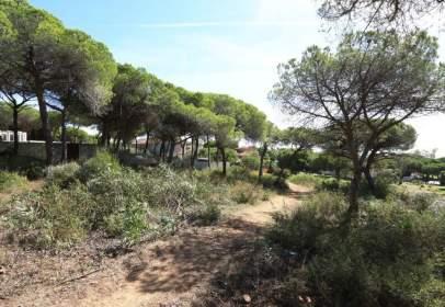 Land in Torrecilla-La Cañada