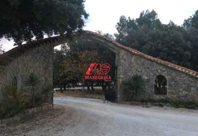 Finca rústica a Camino Viejo de Granada