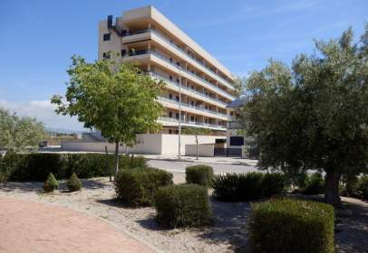 Apartament a Torrenostra