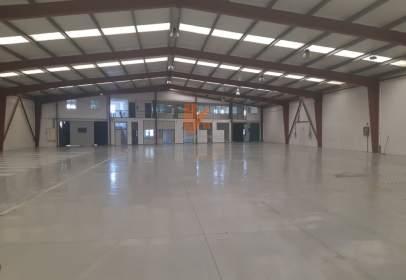Industrial Warehouse in Campus Norte-San Caetano